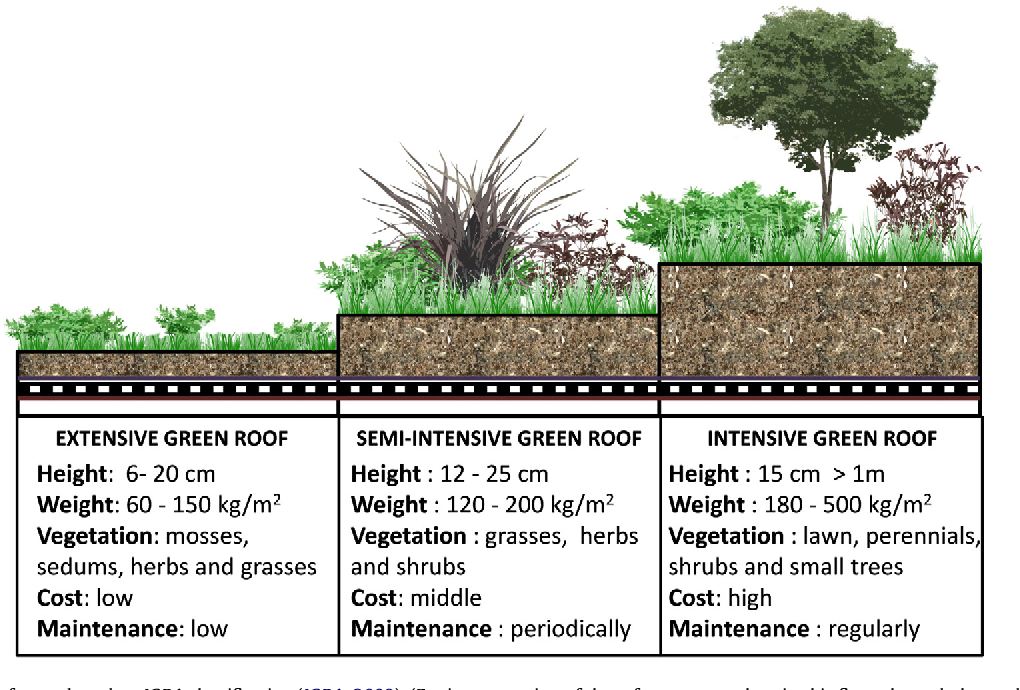Extensive Green Roofs are simpler and easier to install