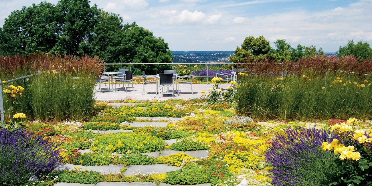Extensive Green Roof give better marketing appeal